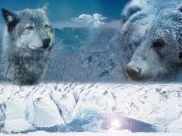 HCY winter spirit Animals